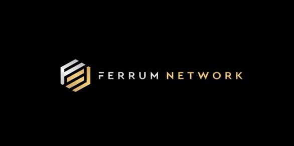 The Ferrum Network review